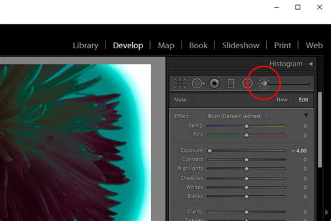 Coloring Lightroom by Brightening Coloring With The Color Mask In Adobe Lightroom