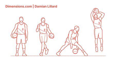 Damian Lillard Dimensions & Drawings   Dimensions.com