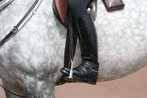 horse riding boots horses