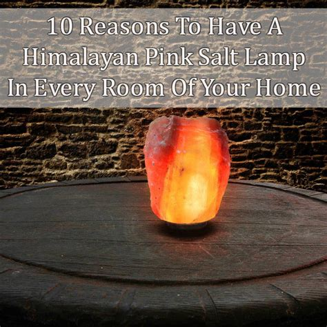 where can you buy a himalayan salt l 10 reasons to have a himalayan pink salt l in every