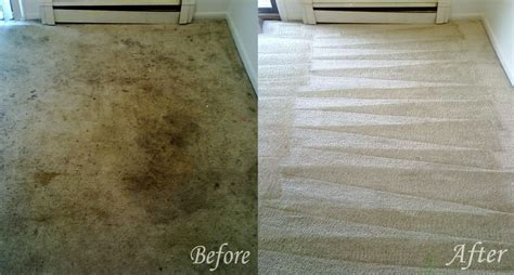 carpet steamer all about floor restore to sheek home improvements