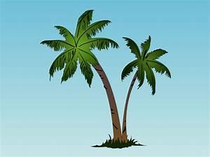 Palm Tree Drawing - Pencil Art Drawing
