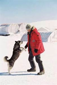 17 Best Images About Eight Below On Pinterest Red