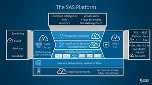 The Analytics Platform Seen Through Enterprise