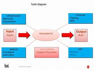 Management Review Turtle Diagram