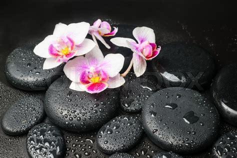 spa konzept mit rosa mit blume rote stockfoto