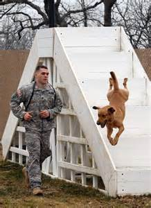 Military Working Dog Kennels
