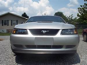 My 99 Stang! - The Mustang Source - Ford Mustang Forums