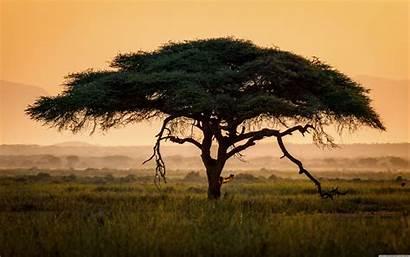 Africa 4k Desktop Wallpapers Backgrounds Ultra Wallpaperaccess