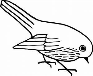 Bird Clipart Black And White #43585