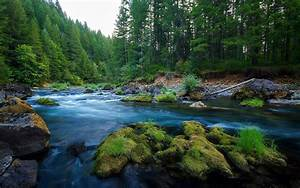 River, Wild, Nature, Forest, Green, Rocks, Wallpapers, Hd, Desktop, And, Mobile, Backgrounds