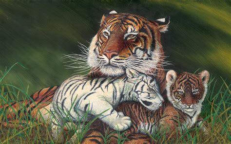 tiger  cubs art painting desktop wallpaper