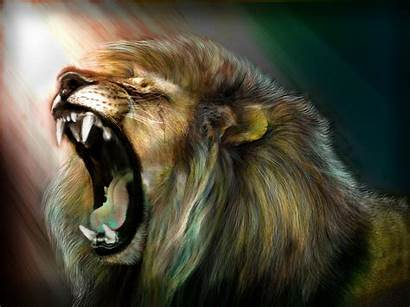 Lion Roar Wallpapers Phone Cave
