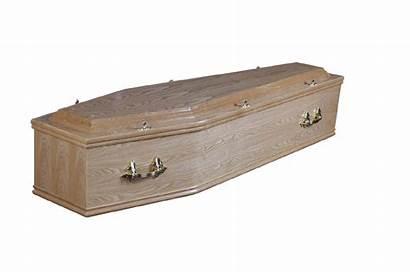 Coffin Cardboard European China Pda