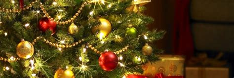 stats christmas trees country that exports the most trees statistics