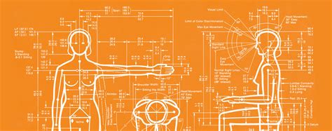 ergonomics  ux designers heart internet blog
