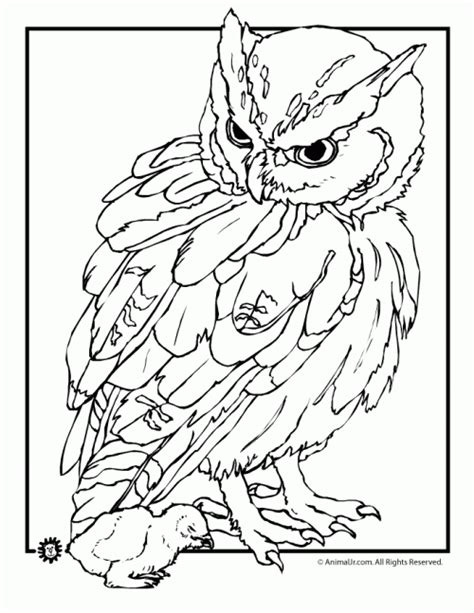 realistic nature pages coloring pages