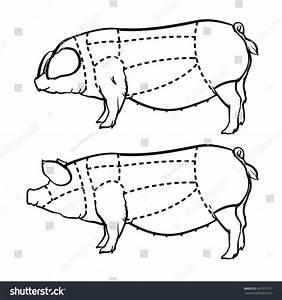 Cut Pig Set Hand Drawn Outline Stock Vector 447015517