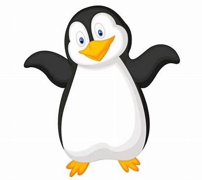 Penguin Penguins Clip Clipart Cartoon Gentoo Chinstrap