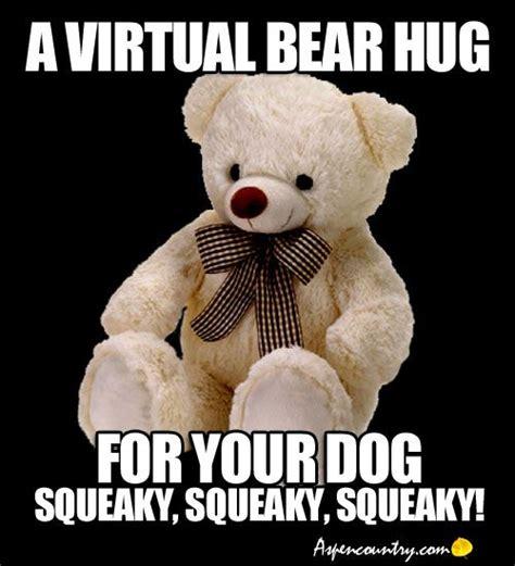 Meme Hug - 463 best images about funny animals on pinterest
