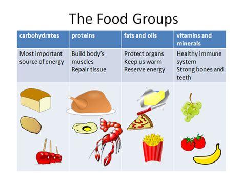 food group sorting teacha