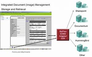 Document management bizflow bpm software and business for Hummingbird document management software