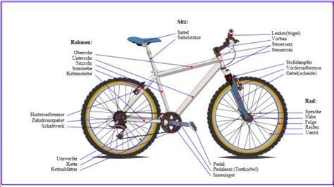 fahrradproduktion  chemnitz seniorenkolleg tu chemnitz