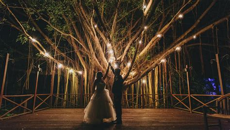 conservatory   inspirations wedding venues