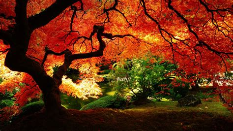 japanese scenery wallpapers wallpaper cave