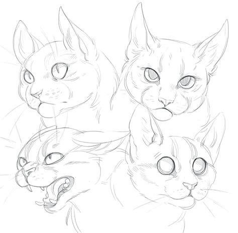 cat doodles  shade shypervertdeviantartcom