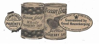 Cranberry Clipart Recipes Ocean Transparent Spray Clip