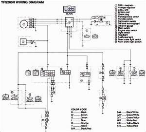 Unique Wiring Diagram Yamaha Warrior 350