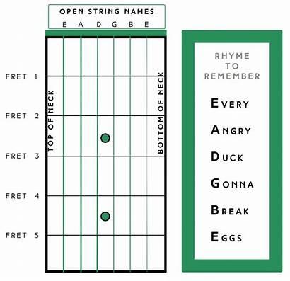 Guitar String Names Strings Called Fret Remember