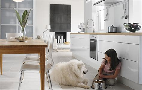 Best Flooring For Kitchen And Pets by How To Choose A Kitchen Design