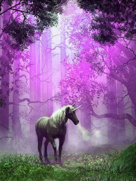 fondo pantalla unicornio bosque