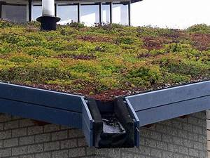 Quelles solutions pour une toiture écologique