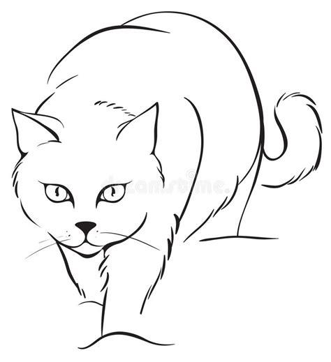 outline cat stock vector image  cartoon kitten