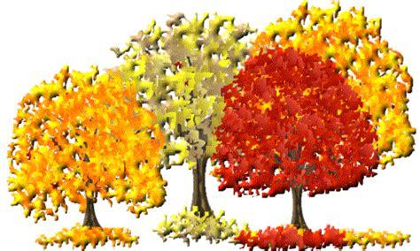 herbst bild lgtrees