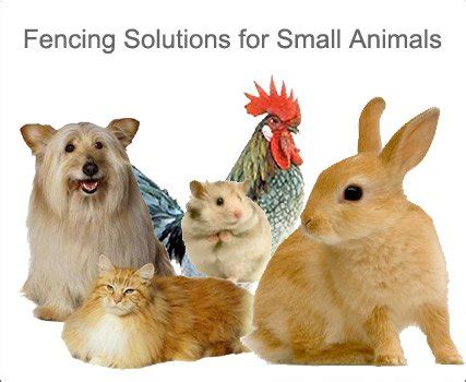 SMALL ANIMAL POWERFIELDS High Quality Electric Fence