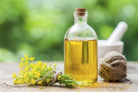 Is Canola Oil Healthier Than Other Vegetable Oils? Or Is