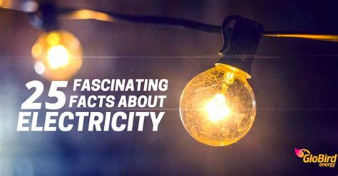 light energy facts 25 interesting facts about light energy globird energy