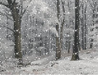 Winter Snow Animated Beauty Gifs Shangralafamilyfun Nature