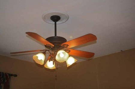 Split Ceiling Fan Medallions by How To Decorate With Medallions Ceiling Fan Home Sweet