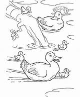 Pond Duck Coloring Baby Swimming Drawing Duckling Mom Print Pages Awesome Netart sketch template