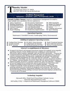 professional resume samples by julie walraven cmrw With pro resume