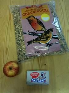 Graines Oiseaux Du Ciel : fabriquer ses boules de graisse et mangeoire pour oiseaux slydventure ~ Melissatoandfro.com Idées de Décoration