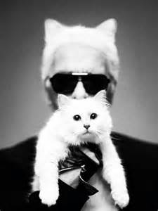 karl lagerfeld cat karl lagerfeld cat amazing this obession is so real