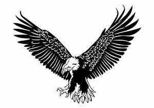 Eagle Free Vector Art - (3126 Free Downloads)