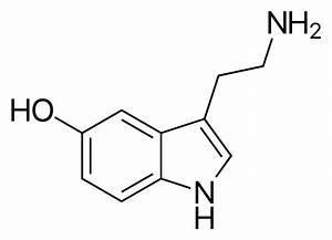 Serotonin - Wikipedia