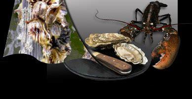 cuisiner les ormeaux cuisiner les fruits de mer conseils de la paimpolaise du